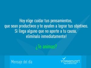 Mensaje Vive Smart 1